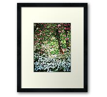 Birdhouse in the Spring Framed Print