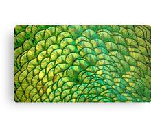 Peacock Tail painted with Angled Brush Strokes Metal Print