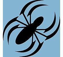 Slanted Spider Photographic Print