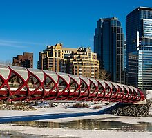Peace Bridge in Winter by MichaelJP