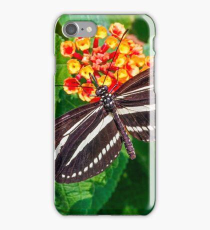 Zebra Longwing Butterfly iPhone Case/Skin