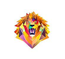 Roar! Photographic Print