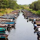 rowing boats moored near ross castle by morrbyte