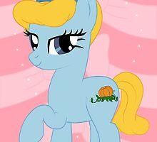 Cinderella Pony by Ashley Krauss
