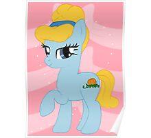 Cinderella Pony Poster