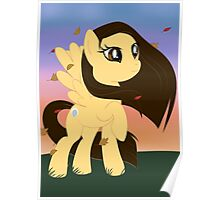 Pony Pocahantas Poster