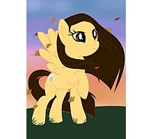 Pony Pocahantas Photographic Print