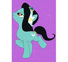 Pony Jasmine Photographic Print