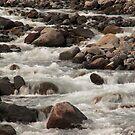 White River Rush - 2 ©  by © Hany G. Jadaa © Prince John Photography
