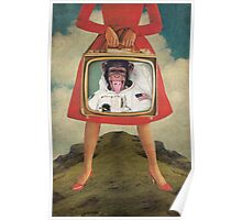 Animal Collection -- Monkey See Monkey Do Poster