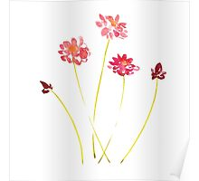 Watercolor red flowers Poster