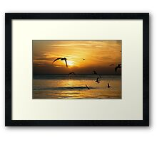 Siesta Key  Framed Print