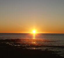 Sunrise @ Penguin by Kate Caston
