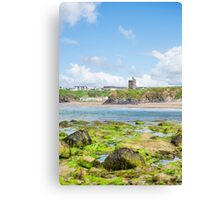 seaweed covered rocks with castle and beach Canvas Print