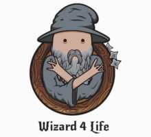 Wizards Represent! by Gigabyte