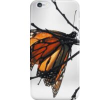 MONARCH BUTTERFLY SURROUNDED IN GRAY SCALE iPhone Case/Skin