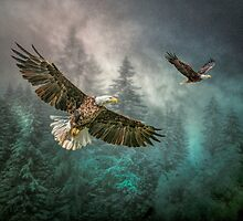 Valley Of The Eagles by Tarrby