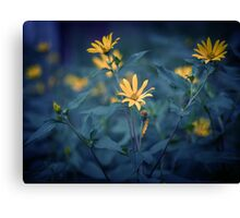 Flowers. Canvas Print