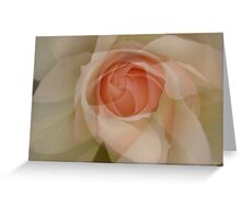Petals - JUSTART © Greeting Card