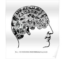 phrenological organs symbolically - gift idea Poster