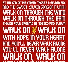 You'll Never Walk Alone by Cotza