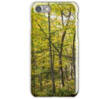 Forest.  iPhone Case/Skin