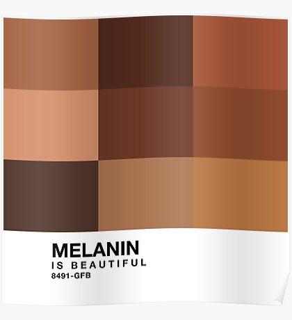 Melanin Pantone Poster