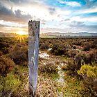 Sedbury Creek, Marion Bay, Tasmania by Kate Caston