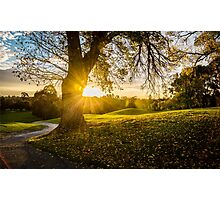 Sunset, Ivanhoe Golf Course Photographic Print