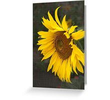 Keep your face to the sunshine...  Greeting Card