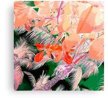 Peach Palms Canvas Print