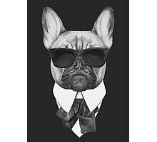 French Bulldog In Black Photographic Print