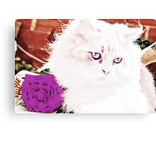 Rose Kitten Canvas Print