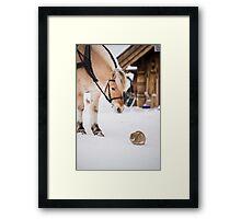 Hest og kanin Framed Print