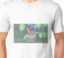 eastern bluebird on a wire Unisex T-Shirt