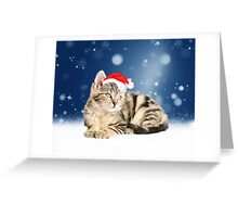 A cute Cat Sitting with Red Santa Hat Greeting Card