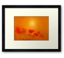 Poppies in gold'... Framed Print