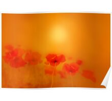 Poppies in gold'... Poster