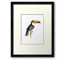 Toucan Tropical Bird Kids Playroom Art Print Framed Print