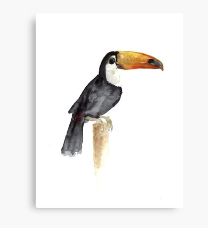 Toucan Tropical Bird Kids Playroom Art Print Canvas Print