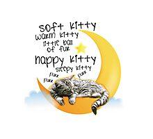 Soft kitty, warm kitty... Photographic Print