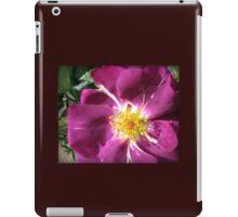 Mysterious Magenta Beauty - Wild Rose iPad Case/Skin