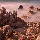 North West Tasmania by Imi Koetz