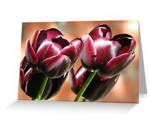 Singing of Spring - Quartet of Tulips Greeting Card