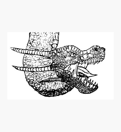 Dragon Sketch Photographic Print