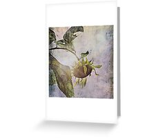 rural sky sunflower Greeting Card