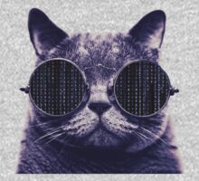 Sunglasses Cat - Matrix by Cimoe