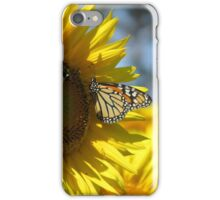 butterfly on a sunflower pt.2 iPhone Case/Skin