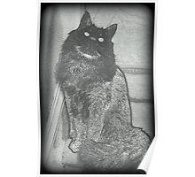 Klassic Kat Poster