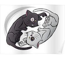 Yin Yang Cat Poster